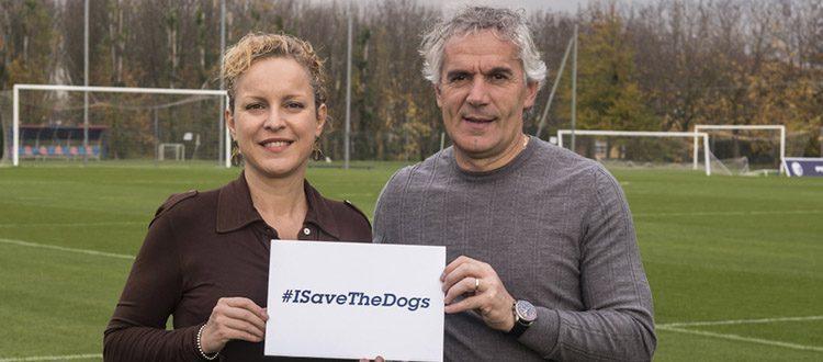 Donadoni e Massaro al fianco di Save the Dogs per salvare i cani randagi
