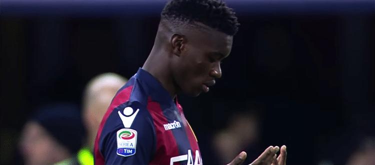 Un turno di squalifica per Masina, Mbaye e Palacio, niente Bologna-Sassuolo