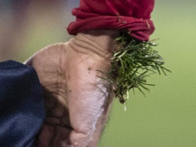 Bologna-Lecce, ultimo match prima della sosta invernale, domenica 22 dicembre alle ore 15