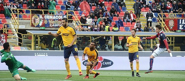 Il Verona torna a Bologna dopo quasi due anni, l'ultimo precedente è un 2-0 per i rossoblù