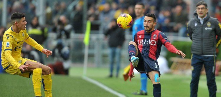 Seduta di scarico per i titolari di Bologna-Verona, da valutare le condizioni di Sansone