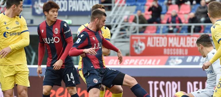 In Serie A 9 vittorie del Bologna e 4 del Verona, 8 i pareggi. Al Dall'Ara si riparte dall'1-1 del 19 gennaio 2020